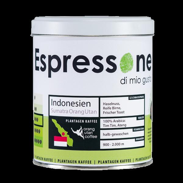Sumatra Orang Utan Artikelbild