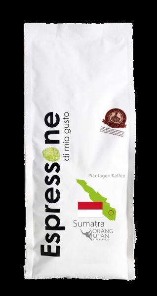 Sumatra Orang Utan 0