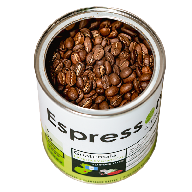 Espressone Plantagen Kaffee Guatemala Lampocoy offene Dose