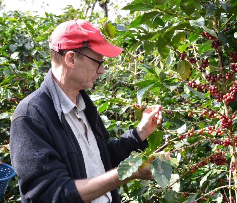 Espressone Plantagen Kaffee Guatemala Lampocoy Cafecita Team